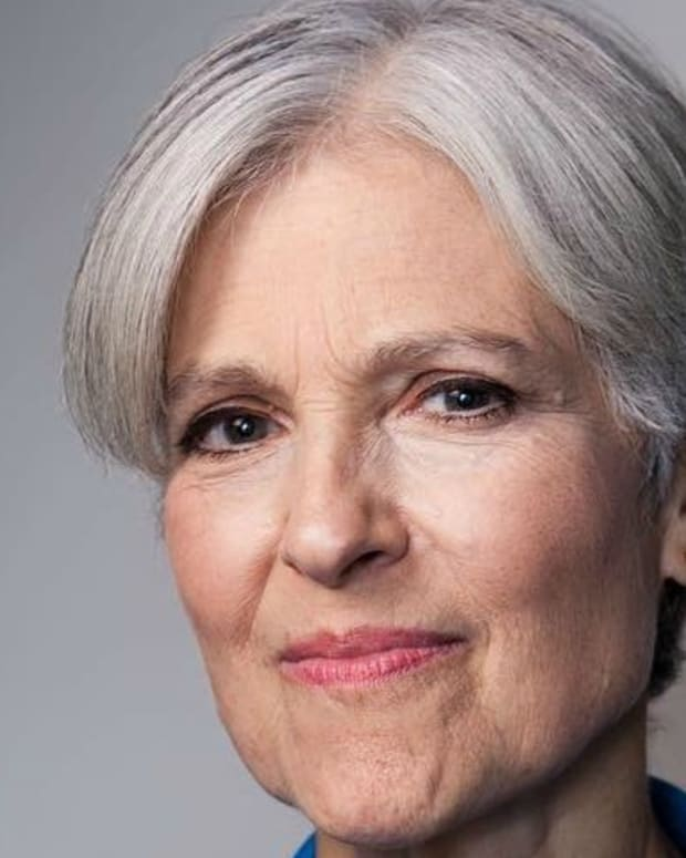 Michigan May Force Stein To Foot Recount's Total Cost Promo Image