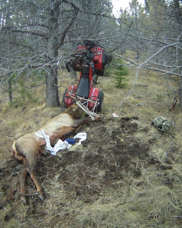 Hunter Impales Himself On Dead Elk's Horns  Promo Image