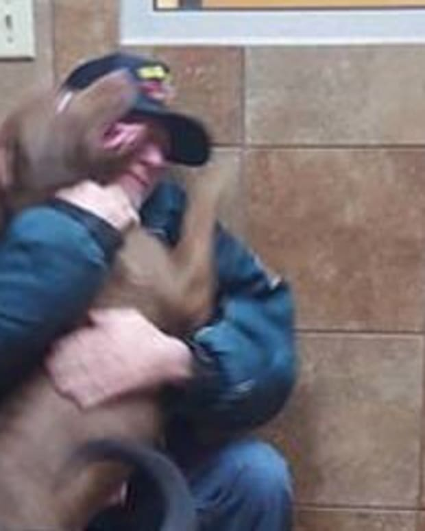 Veteran Saves Cash To Buy Dogs Back, Gets Shocking News Promo Image