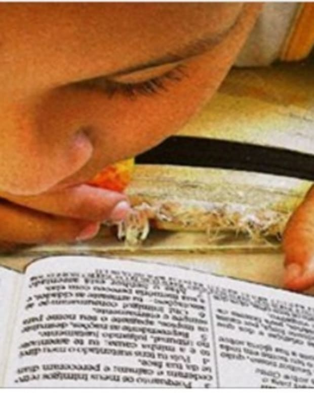 Kentucky Legislature Approves Use Of Bible For School Lessons Promo Image