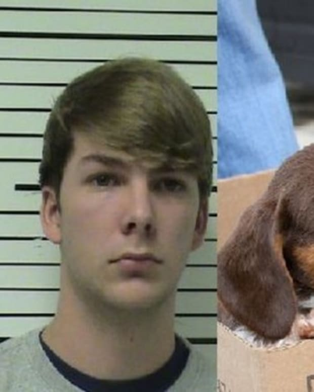 Teens Arrested After Police Find Out What They Did To Puppies Promo Image