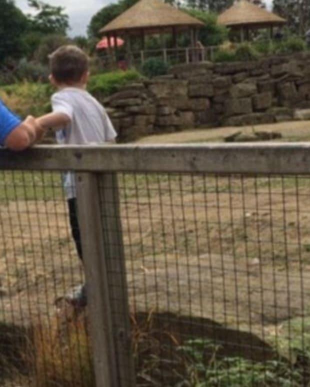 Boy Photographed Inside Rhino Enclosure At Zoo (Photo) Promo Image