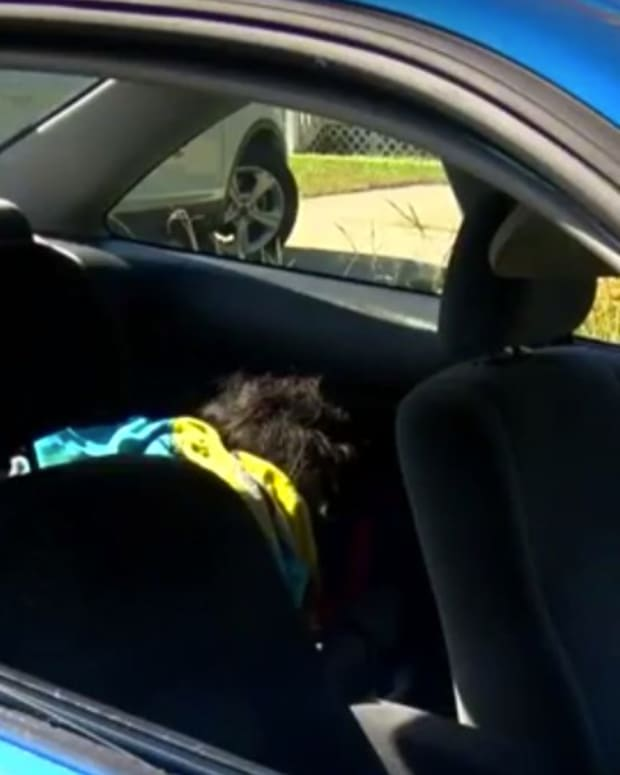 Cops Break Car Window To Save Wig, Won't Pay To Fix? (Video) Promo Image