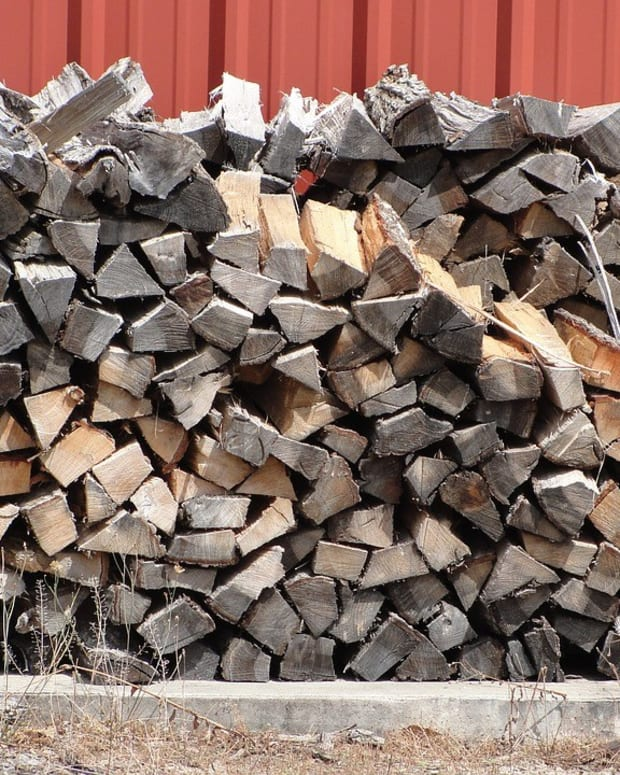 Police Use Checkpoints To Search For Illegal Firewood Promo Image