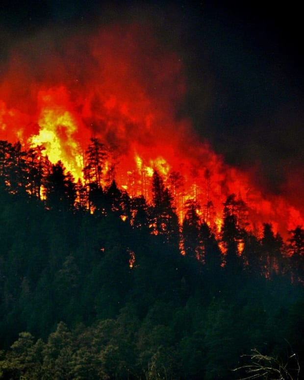 Trump Has Yet To Tweet About California Fires Promo Image