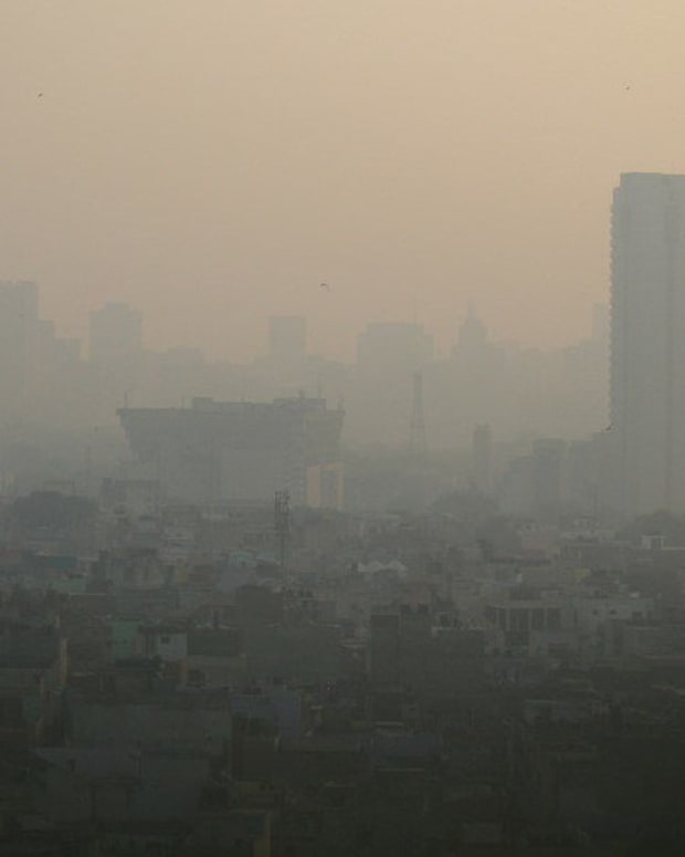 Minister: Pollution In Delhi Makes It 'A Gas Chamber' (Photos) Promo Image