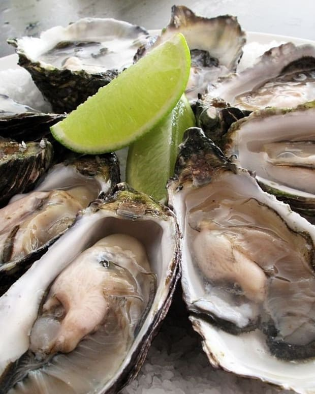 Woman Dies Of Vibrio From Louisiana Oysters And Water Promo Image