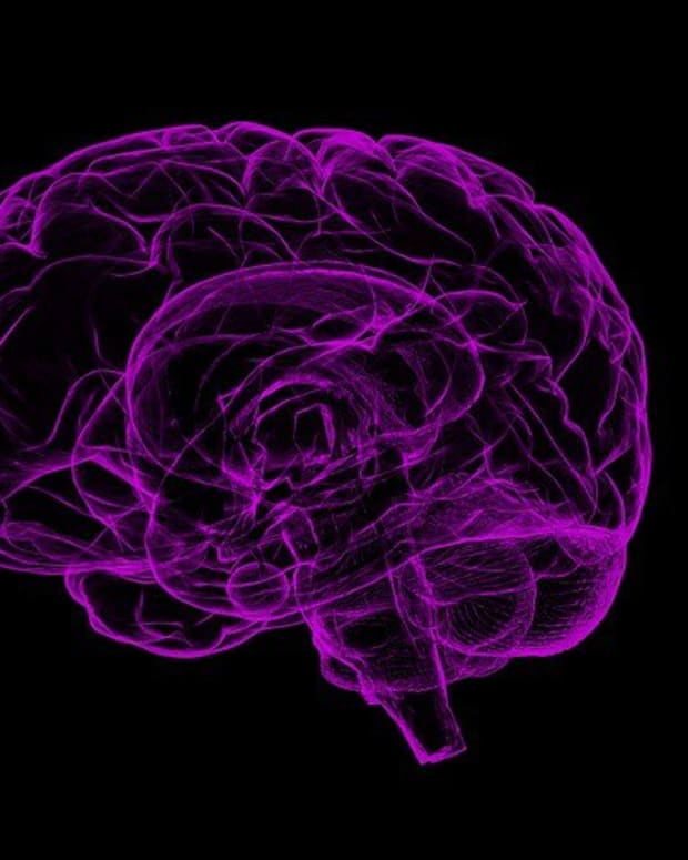 Brain Abnormalities Found In US Embassy Workers In Cuba Promo Image
