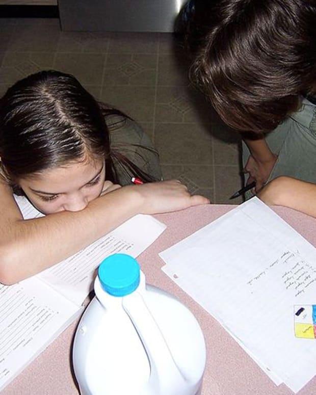 Home-Schooling.