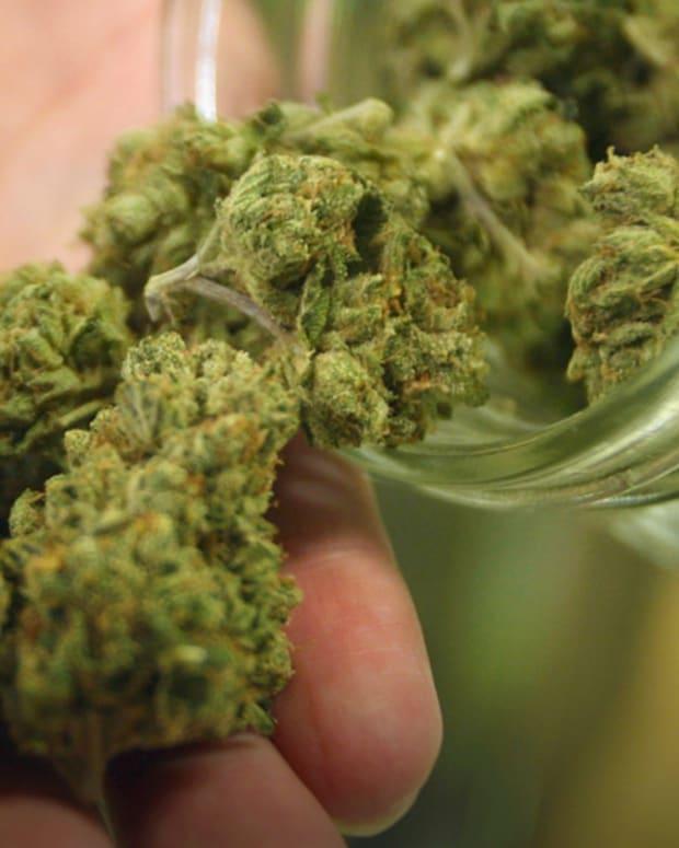 3marijuana.jpg