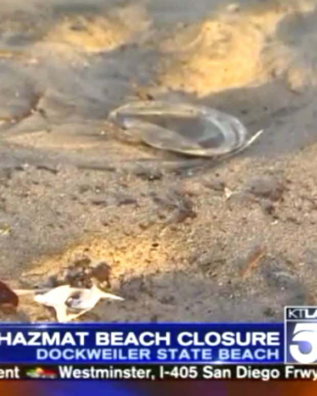 Beach Closure Los Angeles