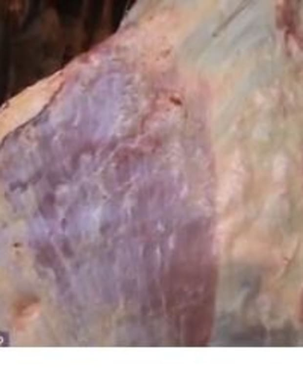 Man Notices Something Odd About Hanging Raw Meat, Takes Out His Phone And Starts Recording (Video) Promo Image