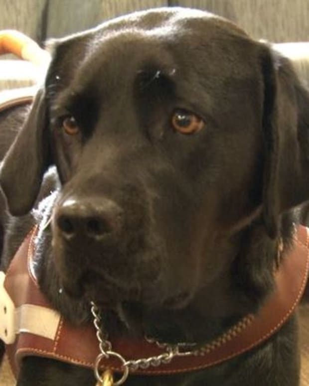 Gabriella Drago and service dog