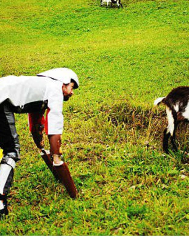 Man Leaves City Life, Becomes A Goat (Photos) Promo Image