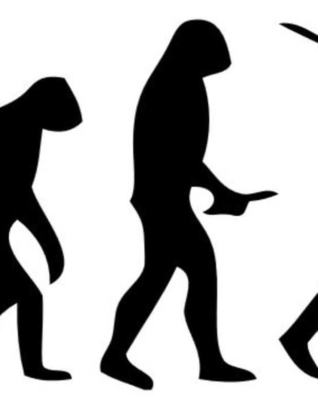 Alabama Textbooks: Evolution Is 'Controversial' Promo Image