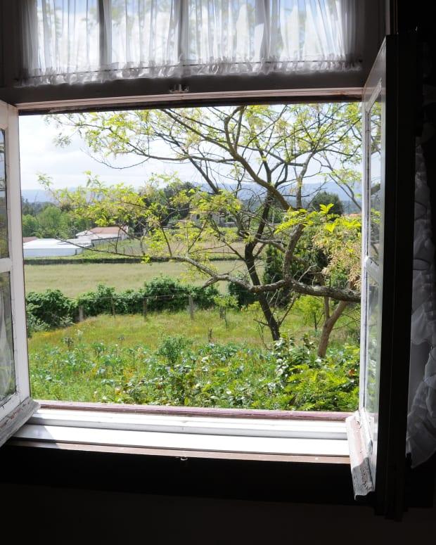 windowman1.JPG