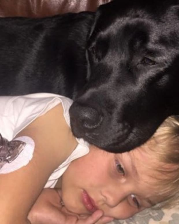Dog Saves Boy With Diabetes' Life (Photos) Promo Image