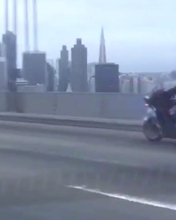 Cops Chase Chihuahua Across SF Bay Bridge (Video) Promo Image