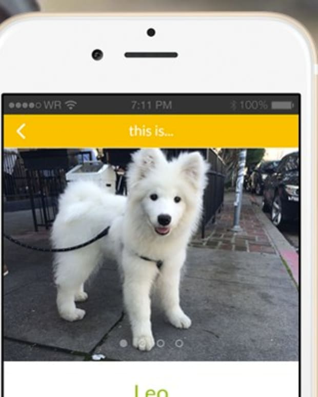 New App Helps People Borrow Dogs Promo Image