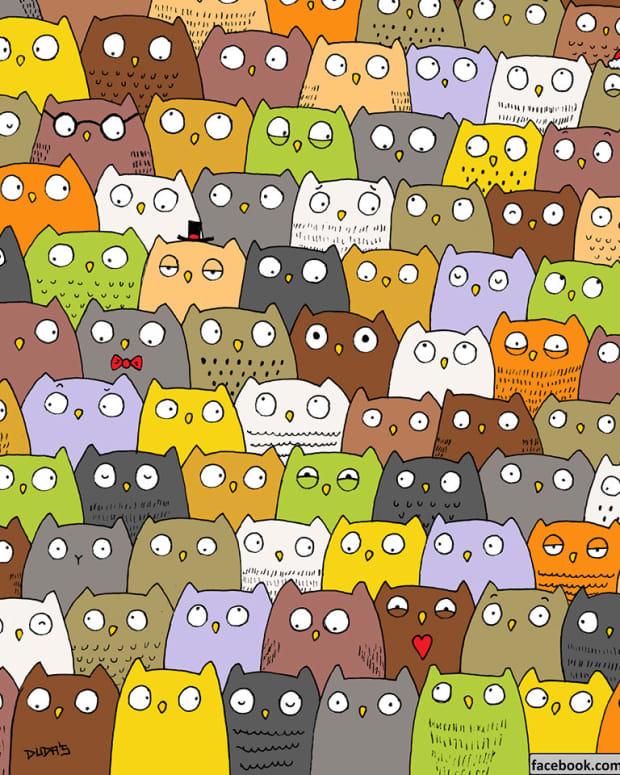 Can You Spot The Hidden Cat?