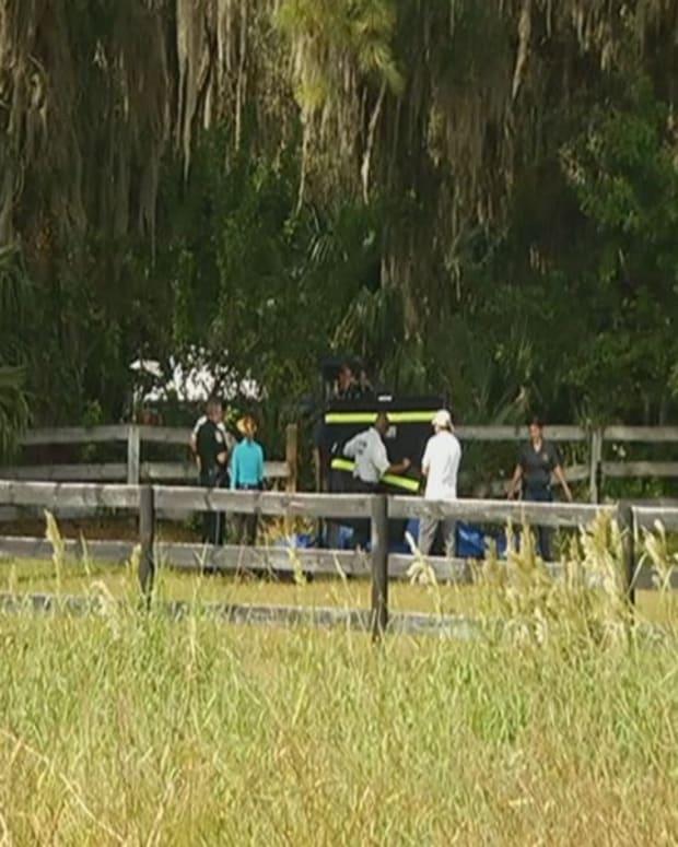 Palmetto Horse Murder.