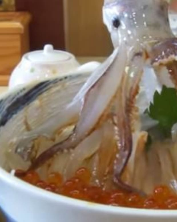 Here's What This Squid Does When You Pour Soy Sauce On It (Video) Promo Image