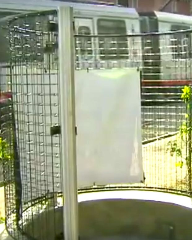 Group Sues San Francisco Over Open-Air Urinal (Video) Promo Image