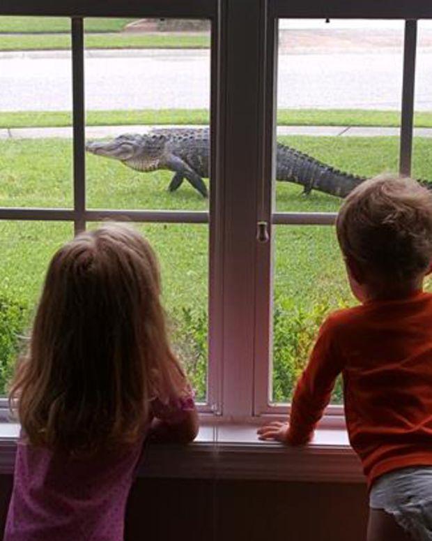 Alligator, South Carolina.