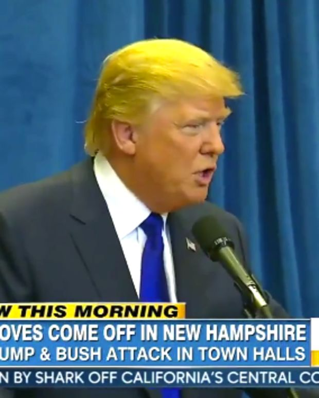 DonaldTrumpAnchorBaby.jpg