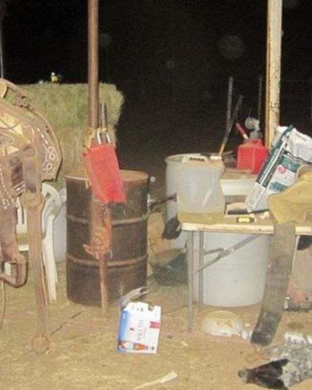 Man Arrested For Hanging Puppy In A Horse Barn Promo Image
