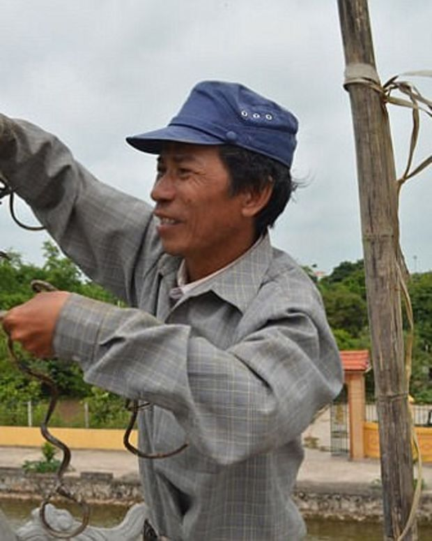 Vietnamese Man Hasn't Cut His Nails In 35 Years (Photos) Promo Image