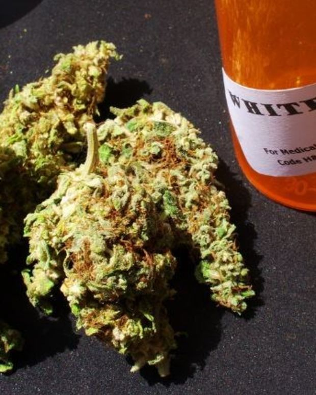 Report: Medical Marijuana States Have Fewer Road Deaths Promo Image