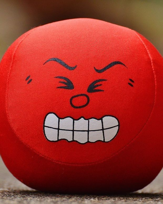 Lena Dunham's 'Psychotic Rage' After Trump's Election (Photo) Promo Image