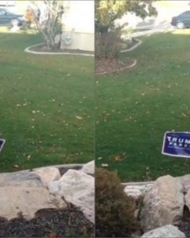 Man Attempts To Steal Trump Sign, Learns His Lesson (Video) Promo Image
