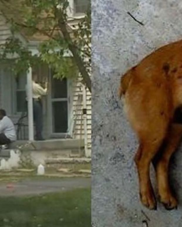 Teens Rob Home, Kill Dog, Then Get Particularly Nasty Surprise Promo Image