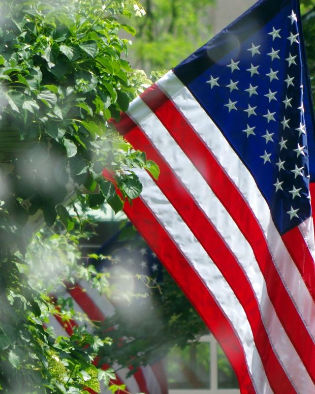 Elderly Woman's American Flags Set On Fire Promo Image