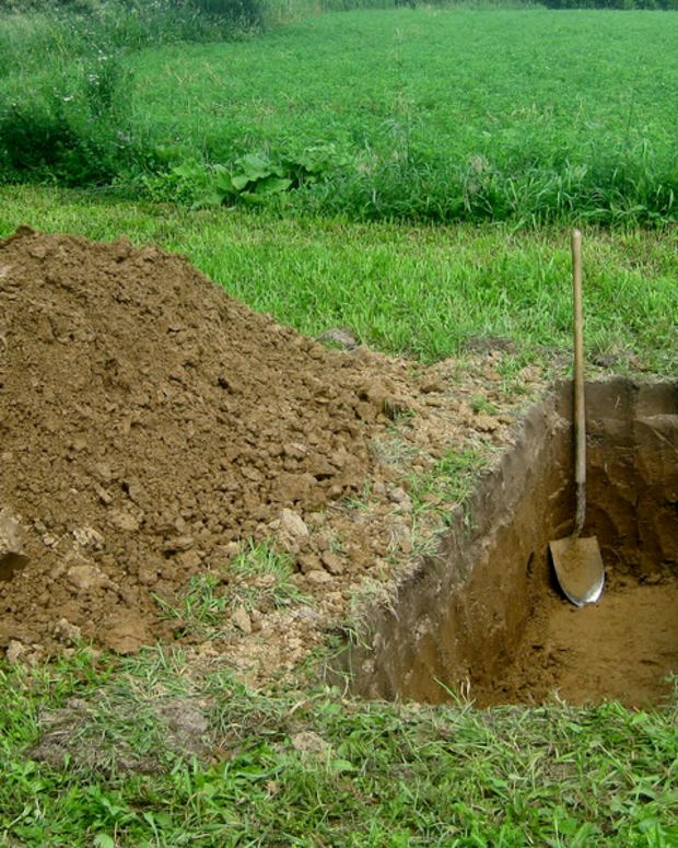 Mom Leaves Baby In Shallow Grave For Three Days (Photo) Promo Image