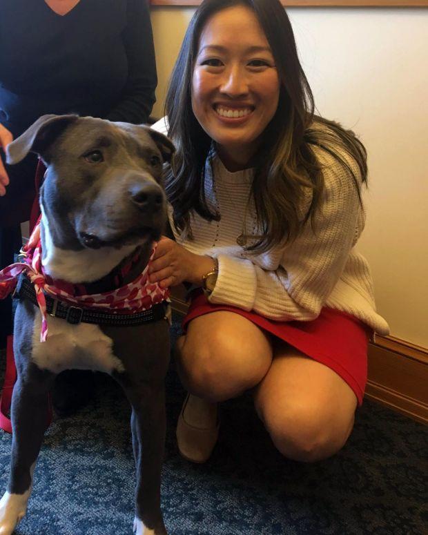 San Francisco Bans Sale Of Non-Rescue Animals In Stores Promo Image