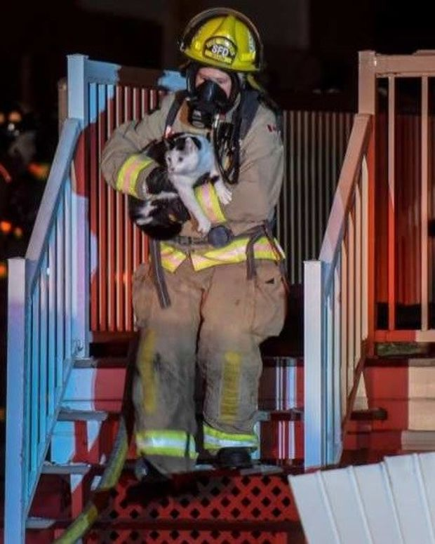 Family Escapes House Fire Thanks To Cat Promo Image