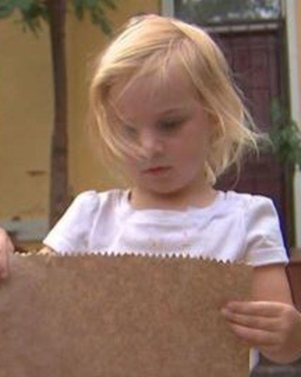 Toddler Gets $75 Littering Ticket Promo Image