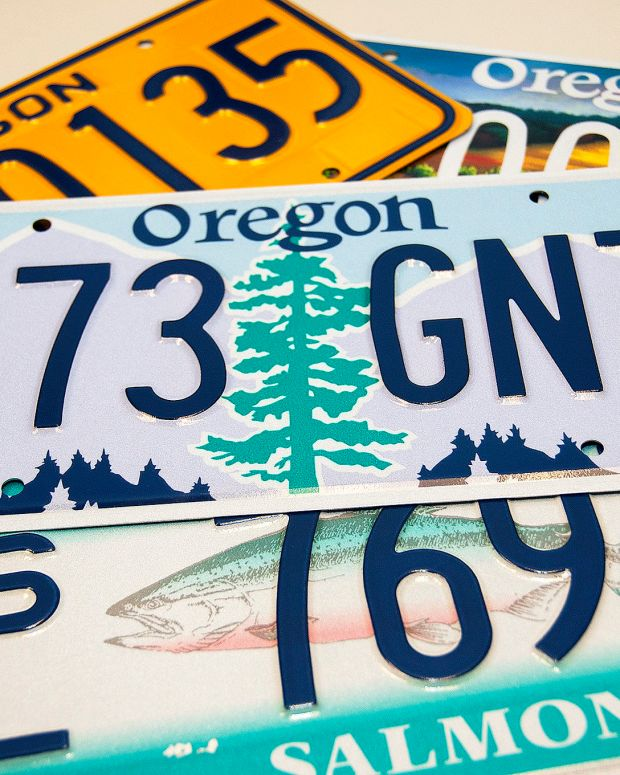 License Plate Turns Profane When Viewed In Mirror (Photos) Promo Image