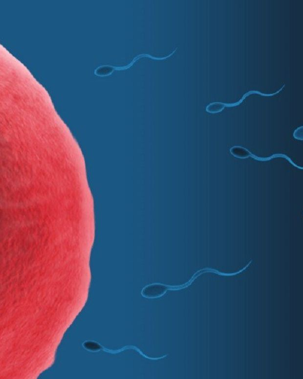 Fertility Doctor Who Used His Own Sperm Avoids Jail Promo Image
