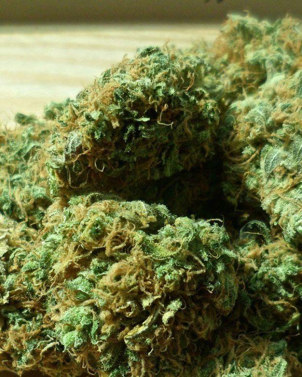 New Hampshire Decriminalizes Marijuana Promo Image