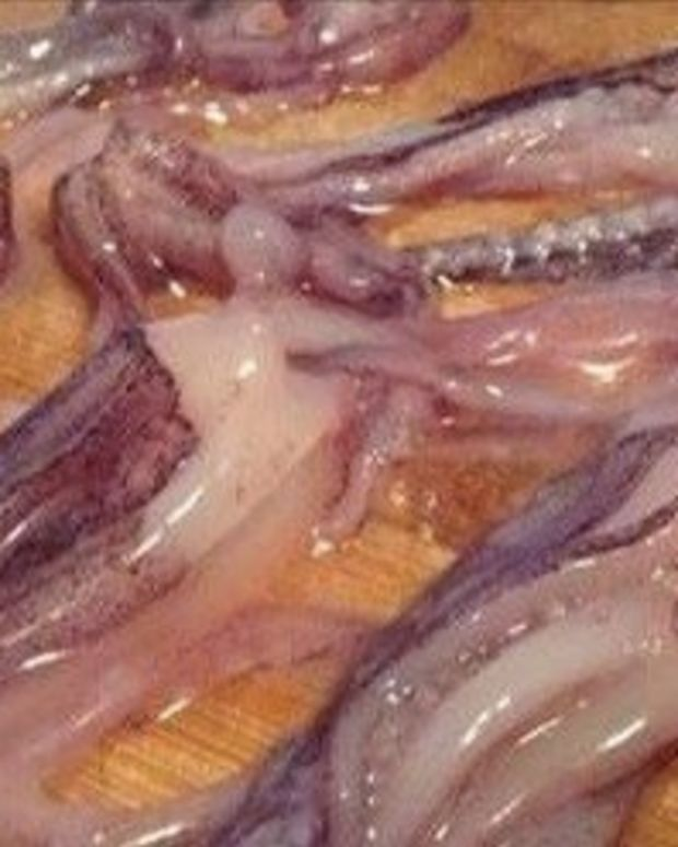 Woman's Mouth Gets Impregnated By Squid Promo Image