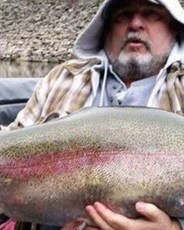 Huge Trout.