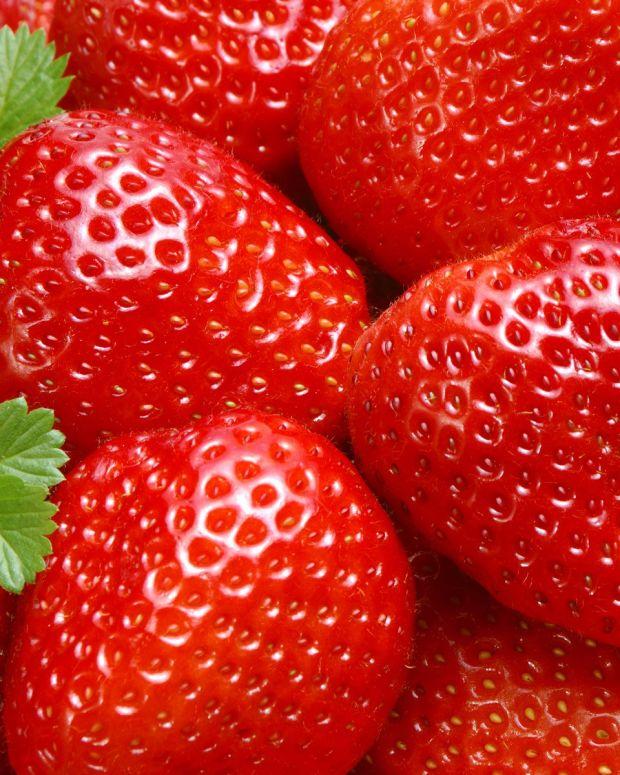 berry_1.jpg