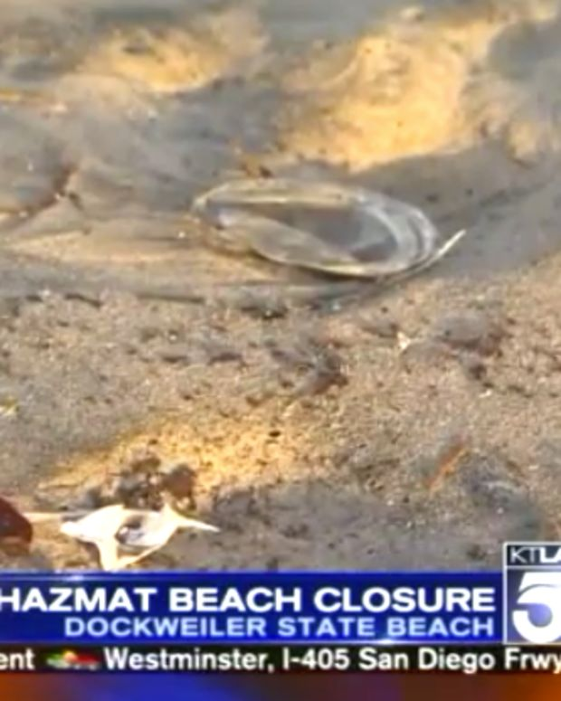 Beach Closure Los Angeles