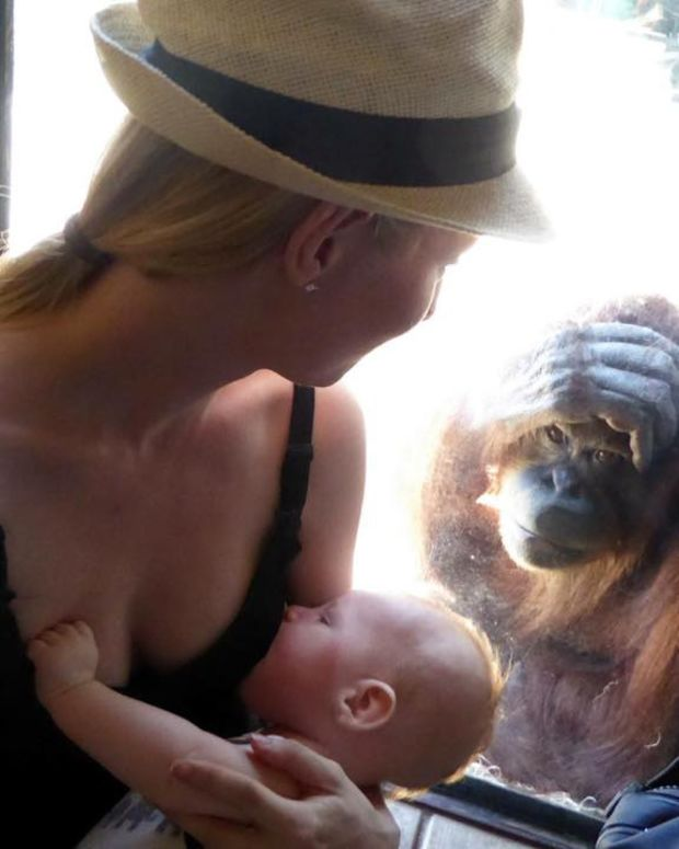 Elizabeth Hunt Burrett And The Orangutan