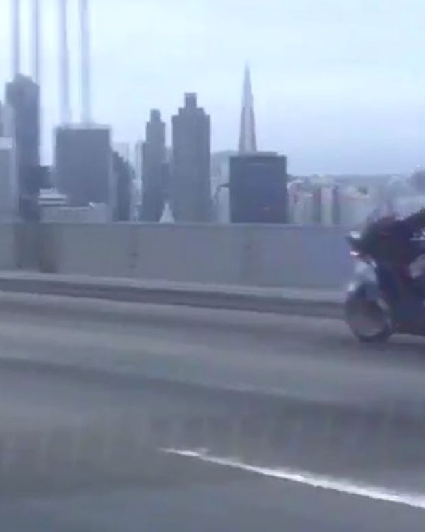 Cops Chase Chihuahua Across SF Bay Bridge (Video) Promo Image