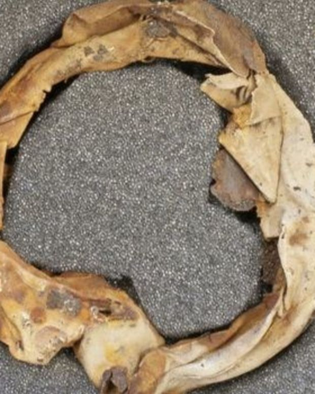 Auschwitz Museum Staff Find Jewelry Concealed In Mug Promo Image
